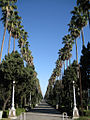 Ramsar Walkway.jpg