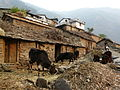 Ransi village.jpg