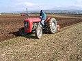 Ras 'Redig (Ploughing Match) Trefarthen - geograph.org.uk - 620127.jpg