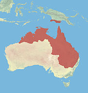 Northern Australia and southern Papua New Guinea