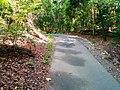 Red Arrow Circuit 8 - panoramio.jpg