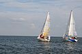 Regatta 2007 in Nida.jpg