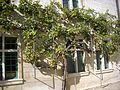 Reims - ancien collège des Jésuites, cour (15).jpg