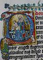 Rejcka brevir4.jpg
