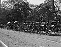 Rickshaws (KEAGLE 0030).jpg