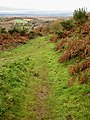 Ridge path, Coppett Hill - geograph.org.uk - 1047924.jpg
