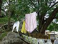 Ridi Vihara (4).jpg