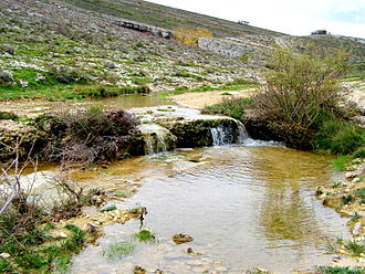 Odra (Pisuerga) - The river Odra near its sources in Fuenteodra (Páramos)
