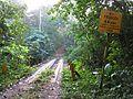 Rio Frijoles - Flickr - treegrow.jpg
