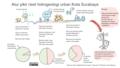 Riset-kolaborasi-urban-hydrogeology-surabaya-2021-png.png