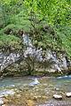 River Mali Rzav and Visocka Banja Spa in Serbia - 4283.NEF 20.jpg