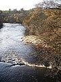 River Swale, downstream - geograph.org.uk - 1047477.jpg