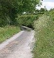Road to Blaengwrog - geograph.org.uk - 1344681.jpg