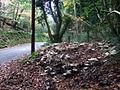 Roadside feast in Cwm Gwaun - geograph.org.uk - 620740.jpg