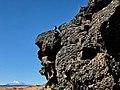 Rock Wren at Captain Jack's Stronghold Historic Trail at Lava Beds Nat'l Monument, Mt Shasta on horizon.jpg