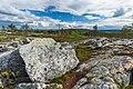 Rocky landscape on Kivitunturi, Savukoski, Lapland, Finland, 2021 June - 2.jpg
