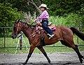 Rodeo in Panama 25.jpg