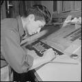 Rohwer Relocation Center, McGehee, Arkansas. Allen Hagio, a former California artist, preparing a . . . - NARA - 539380.tif