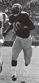 Ron Johnson (running back) American football player