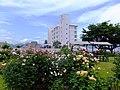 Rose Garden of the Tazawako Rose Park Hotel.jpg