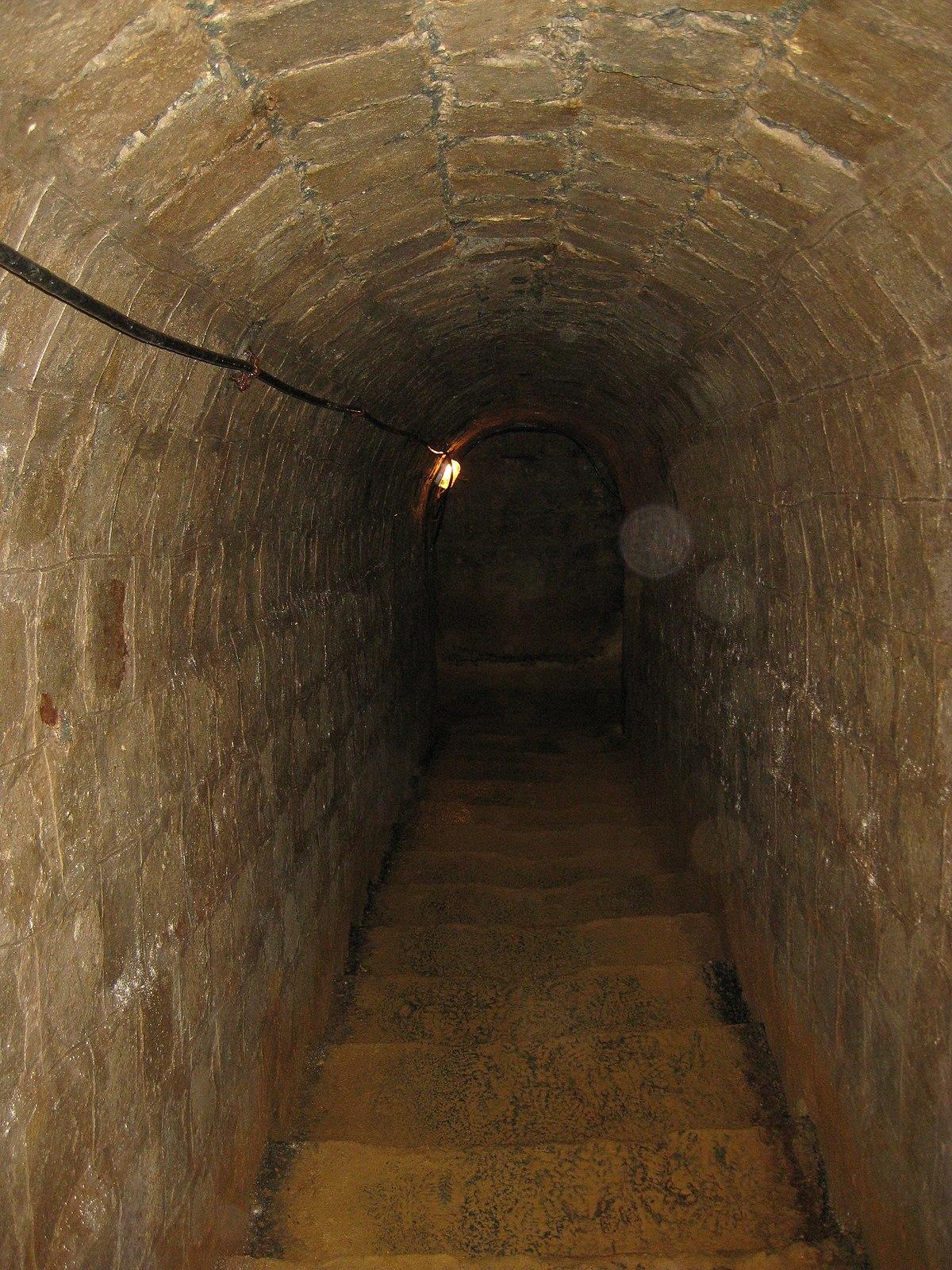 Rosia Montana Roman Gold Mines 2011 - Entrance Stairs-1.jpg