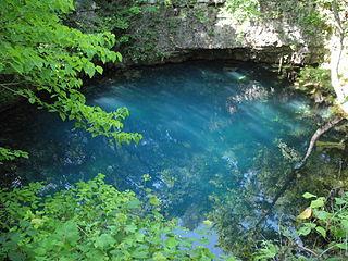 Ozark Pool And Spa