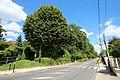 Rue de Paris à Saint-Rémy-lès-Chevreuse le 24 juillet 2016 - 56.jpg