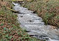 Ruisseau de Malrieu (2).jpg