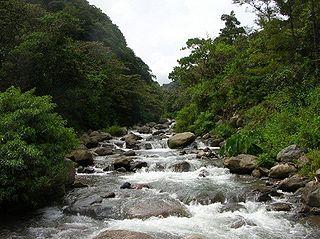 Caldera River river in Panama