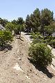 Rutes Històriques a Horta-Guinardó-barraques f alegre 02.jpg