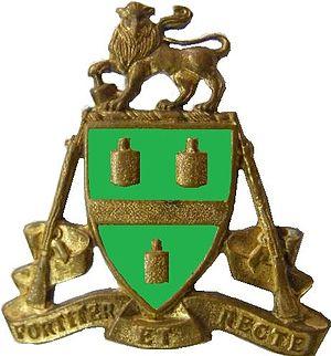 Johannesburg Regiment - SANDF Johannesburg Regiment emblem