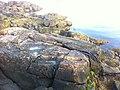Salem, MA, USA - panoramio (45).jpg