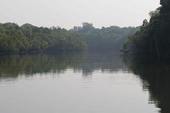 Salim bird Sanctuary.jpg
