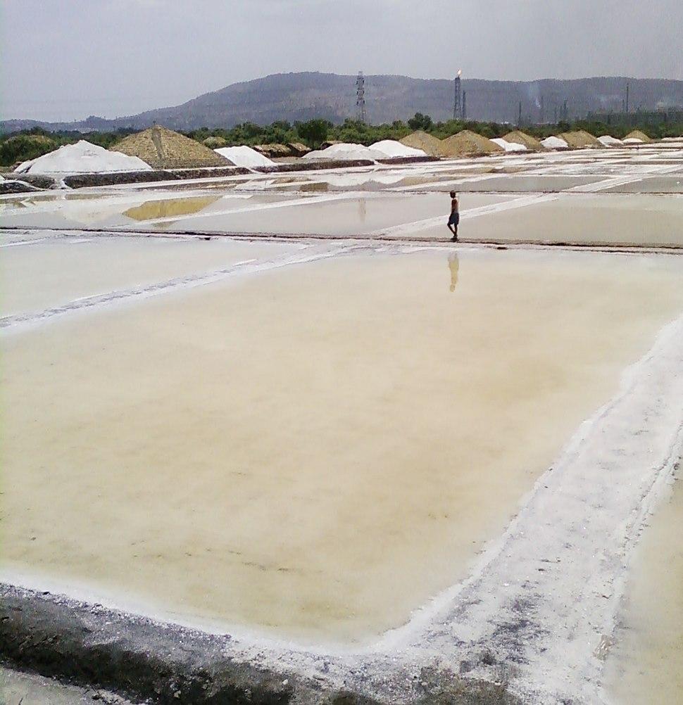 Salt Pan Wadala
