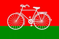 Samajwadi Party Flag.jpg