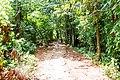 Samaná Province, Dominican Republic - panoramio (146).jpg