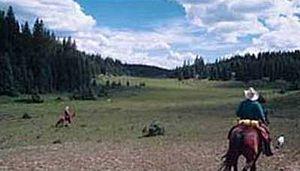 San Pedro Parks Wilderness - Horseback riders in the San Pedro Parks Wilderness.