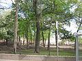 Sankt-Peterburg 2012 4556.jpg