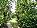 Sankyo Garden - DSC01162.JPG