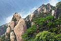 Sanqing Shan 2013.06.15 10-47-24.jpg