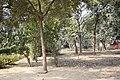 Sarnath park.jpg