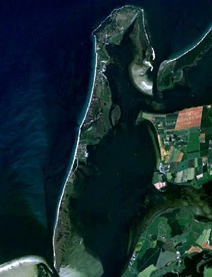 Satellitenbild von Hiddensee