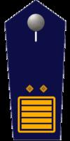 Landesfeuerwehrinspekteur/-in