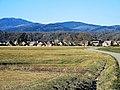 Sentheim, vu de la route de Soppe-le-Haut.jpg