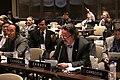 Sesión General de la Unión Interparlamentaria, continuación (8586889899).jpg