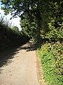 Shady lane - geograph.org.uk - 991958.jpg