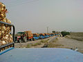 Shalgahi31390.JPG
