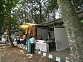 Shop selling from Lalbagh flower show Aug 2013 8662.JPG