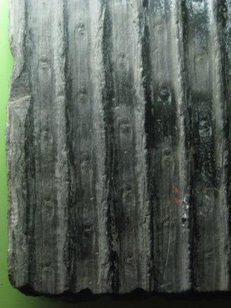 Sigillaria - Image: Sigillaria 2