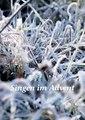 Singen im Advent - Auflage 3.pdf